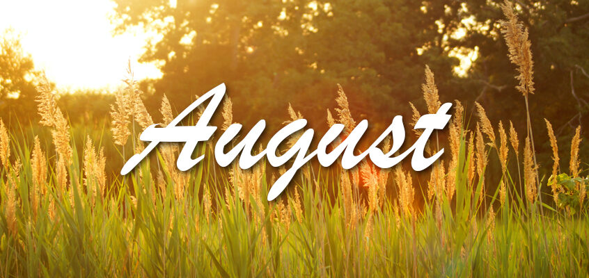 The Events of August