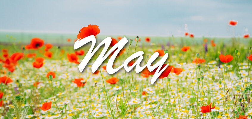 The Events of May